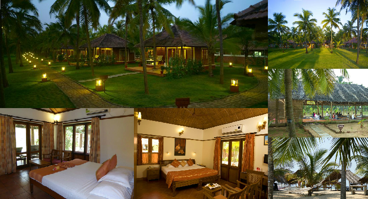 Ayurveda For Health Nattika Beach Ayurveda Resort In Kerala Indien Ayurveda Ayurveda Massage Villen