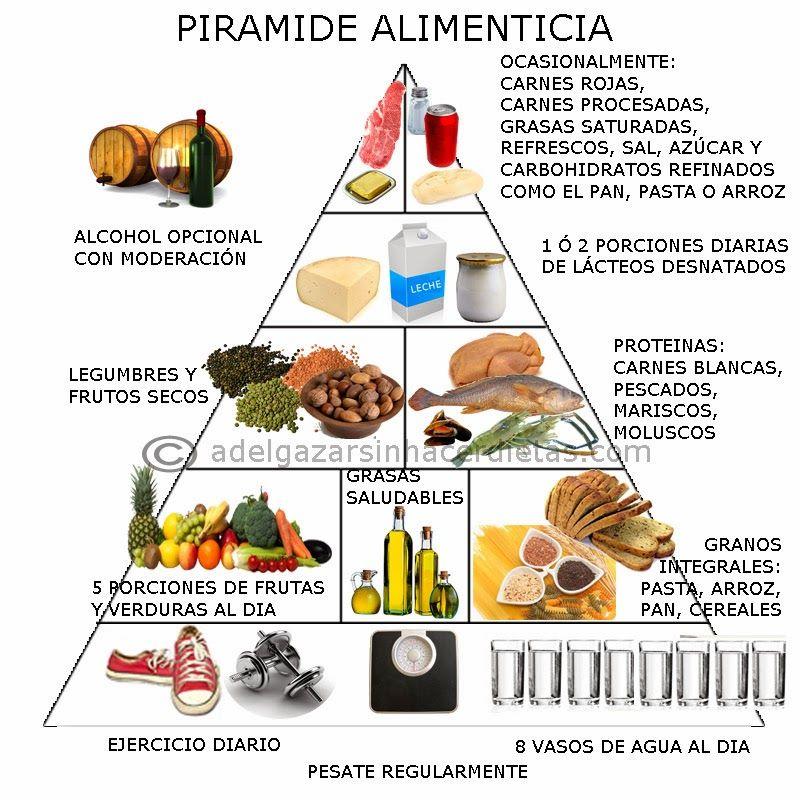 La pir mide alimenticia y el plato nutricional para una alimentaci n saludable y equilibrada - Piramides de alimentos saludables ...
