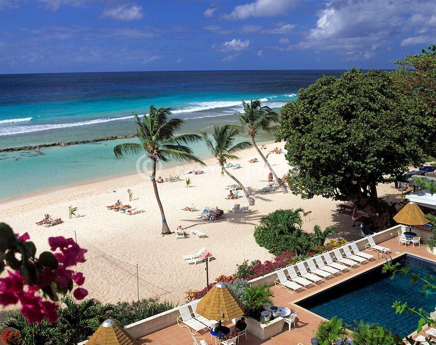 Barbados Coconut Court Beach Hotel Google Search