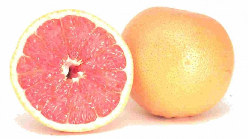 grejpfrut u hrono ishrani grejpfrut ili svee ceeni sok konzumirati minimalno sat vremena nakon ruka u periodu izmeu 16h i 18h po zimskom ra