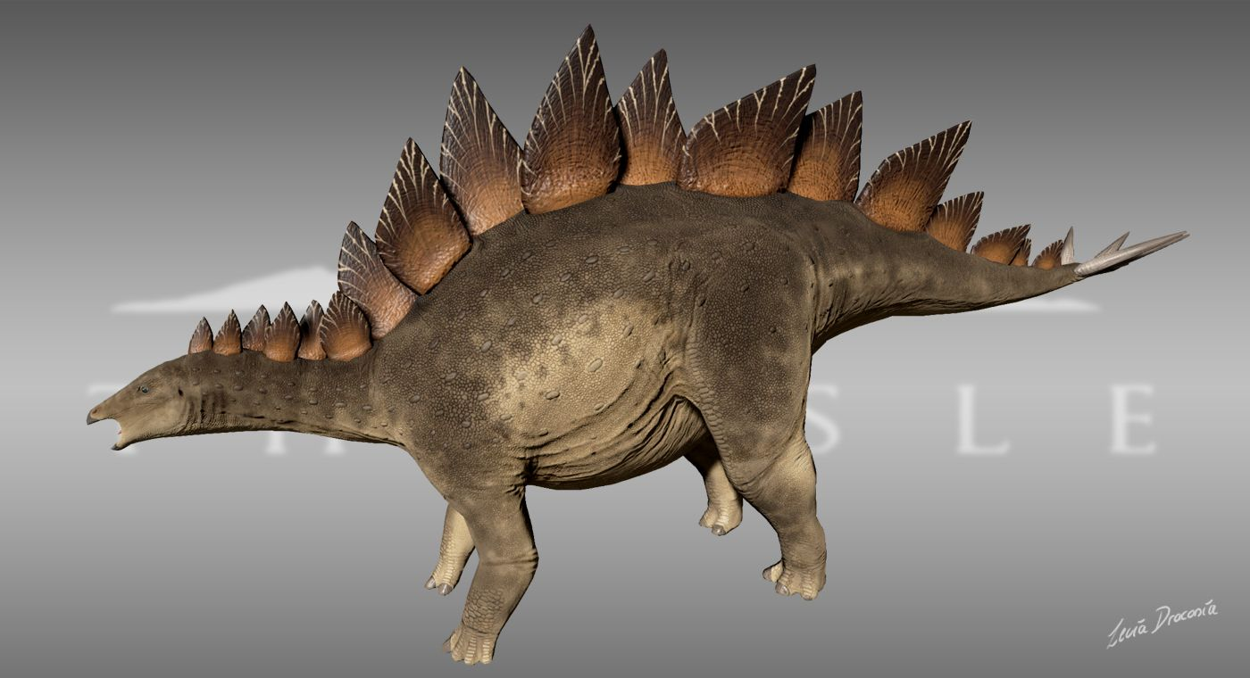 Animals & Dinosaurs Fossil Find Blst Stegosaurus