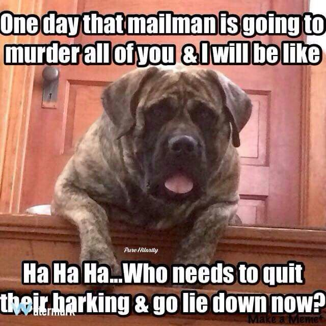 one day that mailman is going to murder all of you and i will be like ha ha ha   who needs to