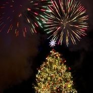Atlanta, GA Fairs & Festivals: Lenox: Lighting of the Great Tree