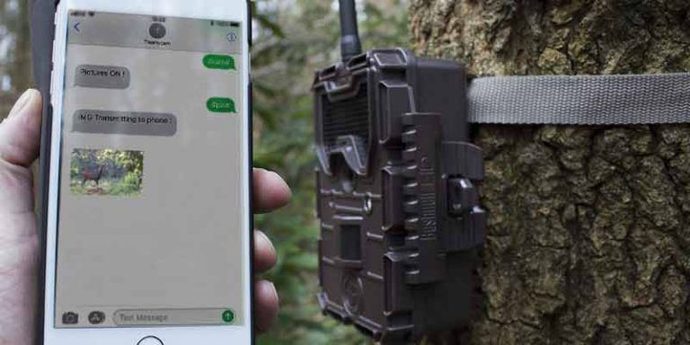 Best trail cameras that send pictures to your phone Hands