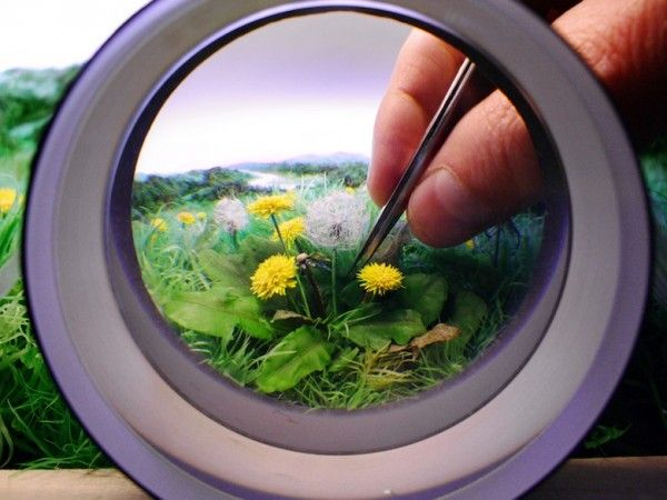 Patrick Jacobs' Magnified Portals into Miniature Worlds