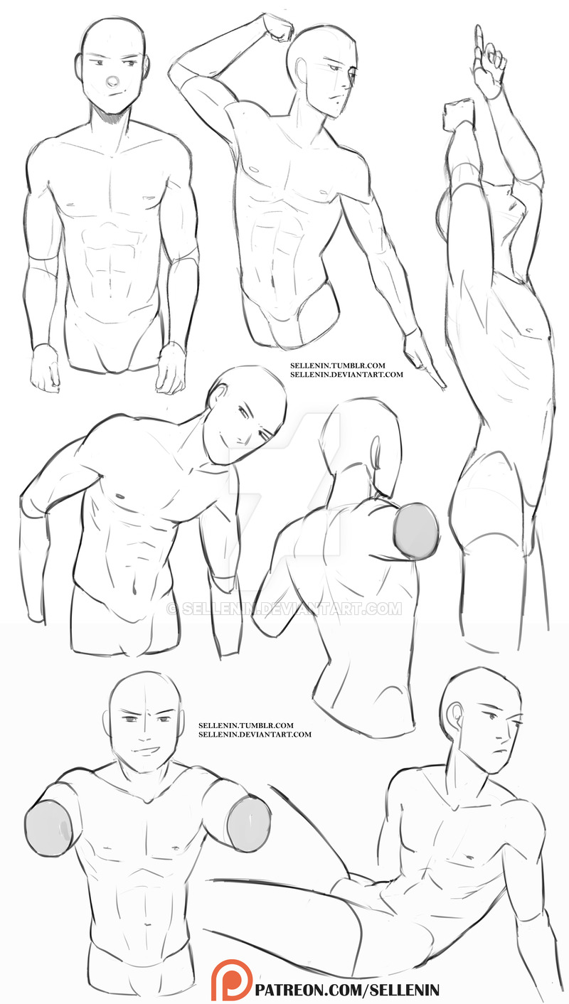 Male Torso Reference By Sellenin On Deviantart Male Art Reference Drawing Reference Poses Art Reference Photos