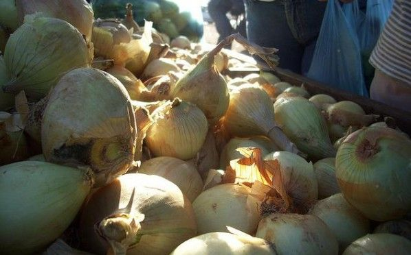 Receta: Cebollas Rellenas (3).