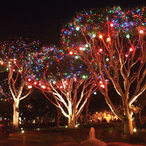 LIGHT SPERES IN TREES - Google Search LIGHTS Pinterest Google