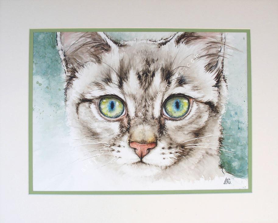 Jeune Chat Aquarelle Aquarelle Croquis Animaux Art Animalier