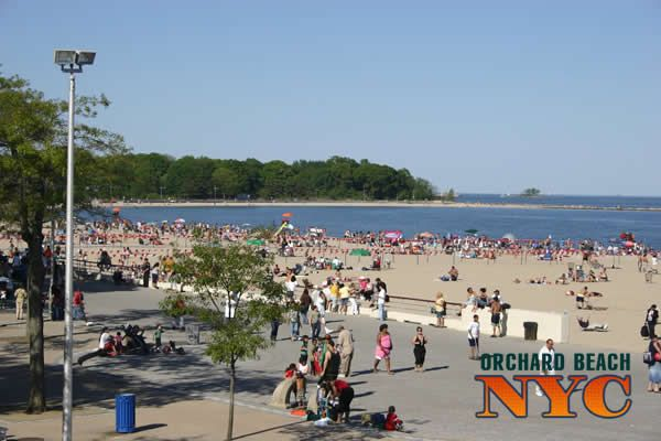 Chocha beach bronx