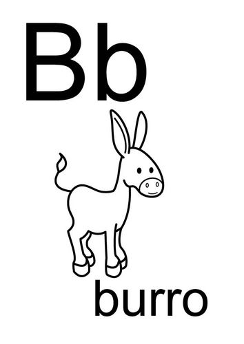 B burro | Burros Donkeys Asses | Pinterest | Donkey