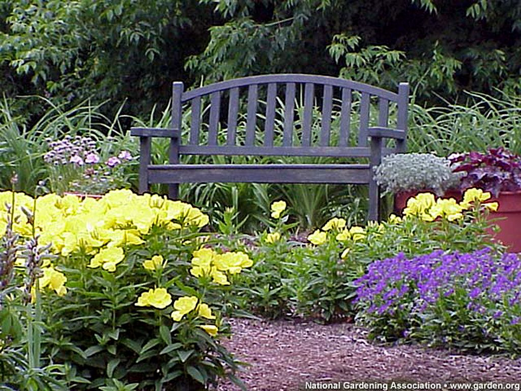 Enjoy a quiet moment on this lovely bench within a beautiful flower enjoy a quiet moment on this lovely bench within a beautiful flower izmirmasajfo