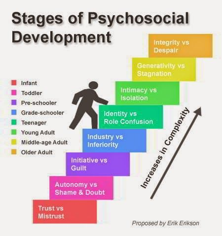 Erick Erikson\u0027s developmental stages NCE Study guides and tips - vocational development stages