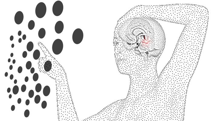 Data Visualization for Business Intelligence: Amygdala-centered Design