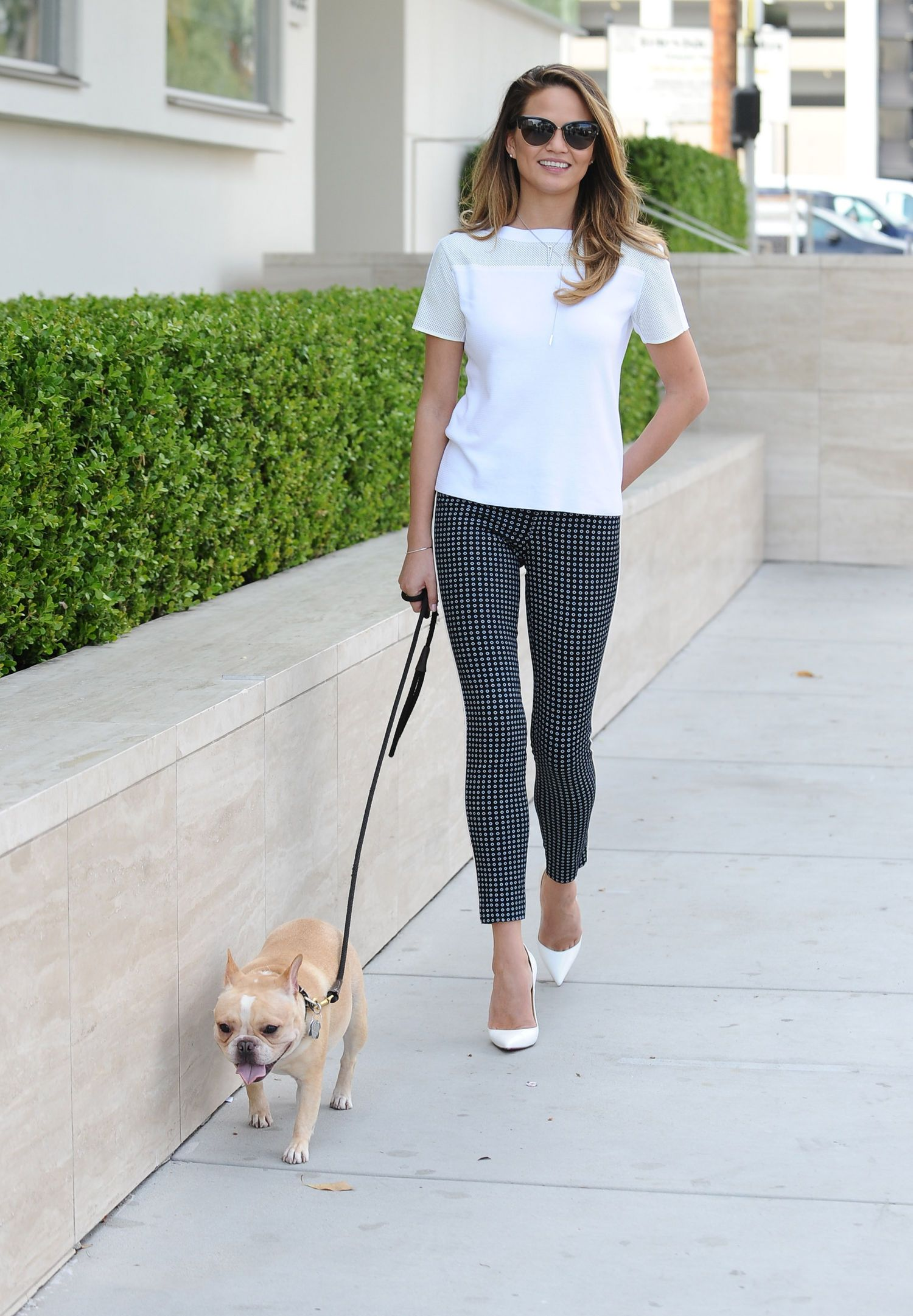 Forum on this topic: Chrissy Teigens Guide To Walking Your Dog , chrissy-teigens-guide-to-walking-your-dog/