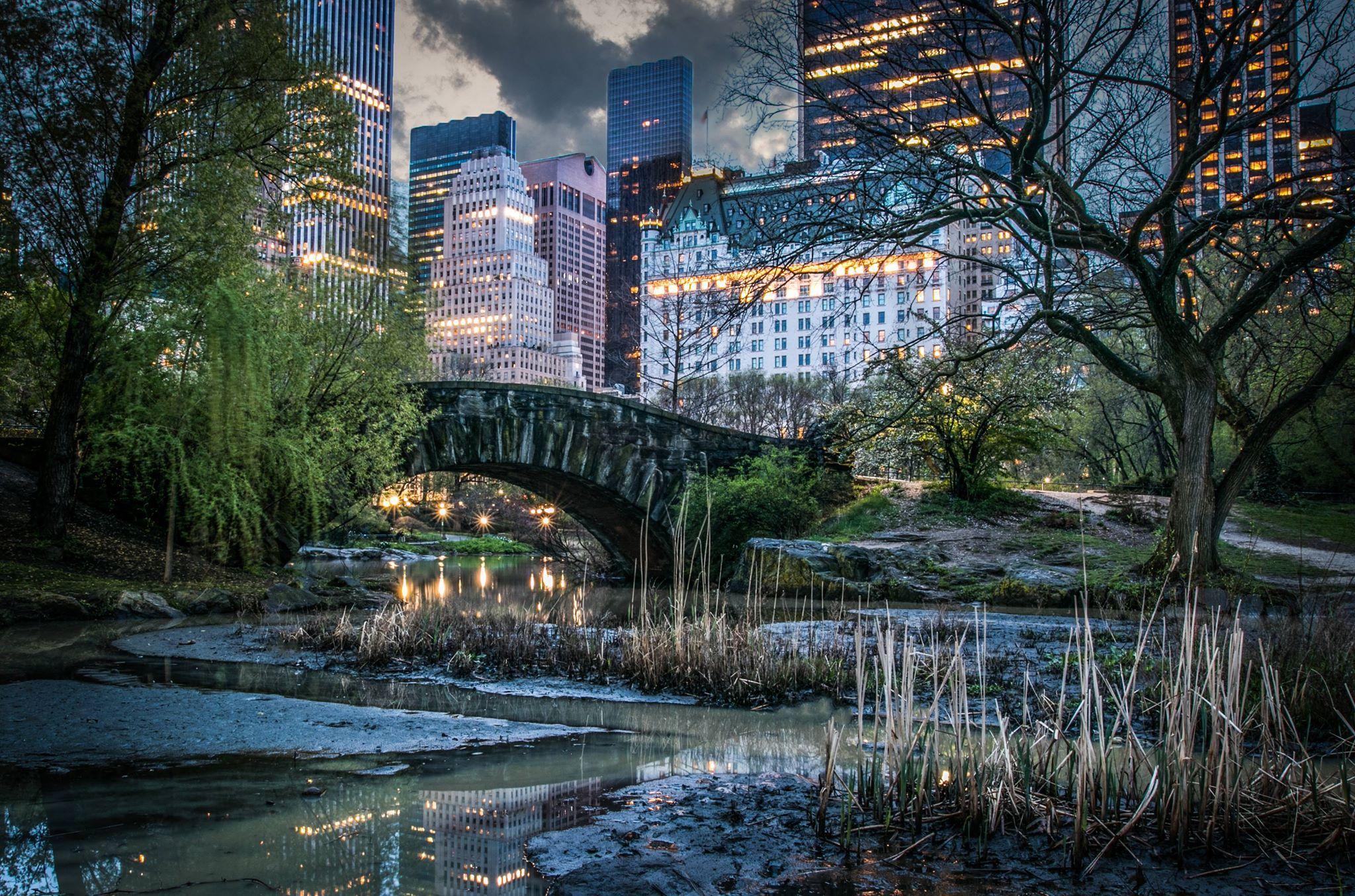 Central Park Proposal at the Gapstow Bridge | Heiratsantrag
