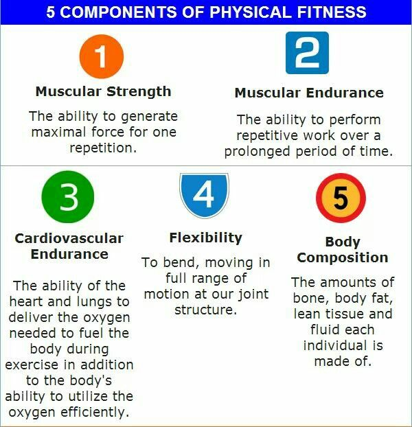 5 components of fitness PE Physical fitness, Physical