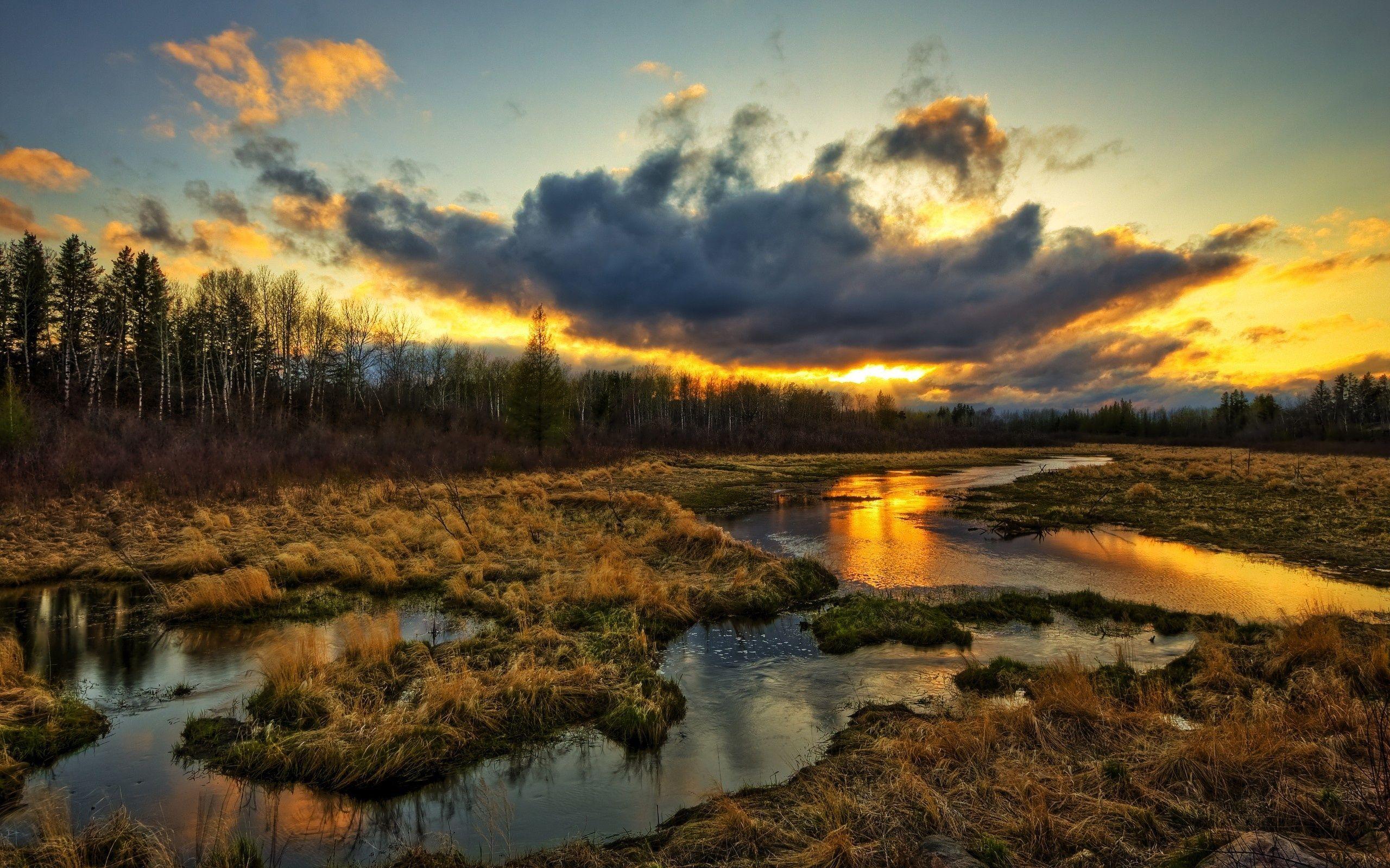 湿地 雲 夕日 草 水の流れ 美しい風景 壁紙 2560x1600 壁紙ダウンロード Ja Best Wallpaper Net 庭作りのアイデア 風景 美しい風景