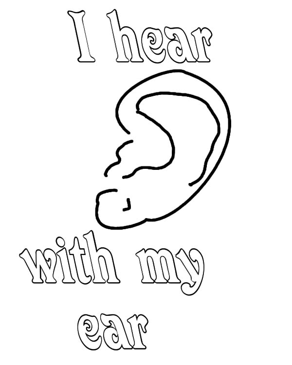 I Hear With My Ear Coloring Pages Kids Play Color In 2020 Coloring Pages Ear Picture Simple Prints