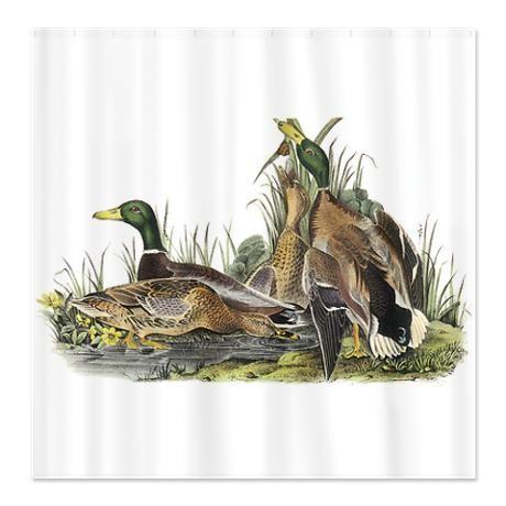 Mom Mallard Wildlife Art Shower Curtains Ducks Turtle Bathrooms Palette