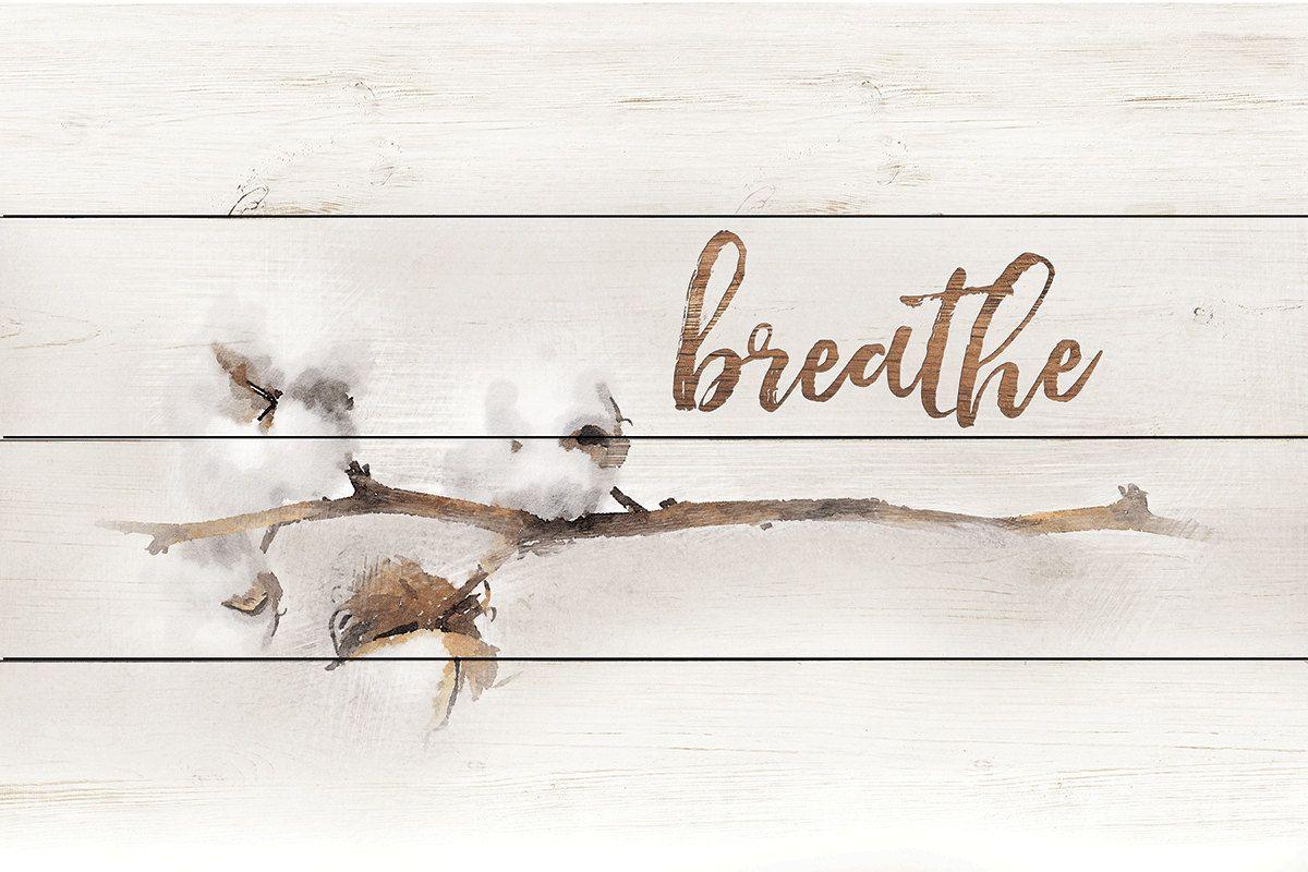 Art Print MA2448 Breathe Cotton Stems Framed or Plaque By Marla Rae