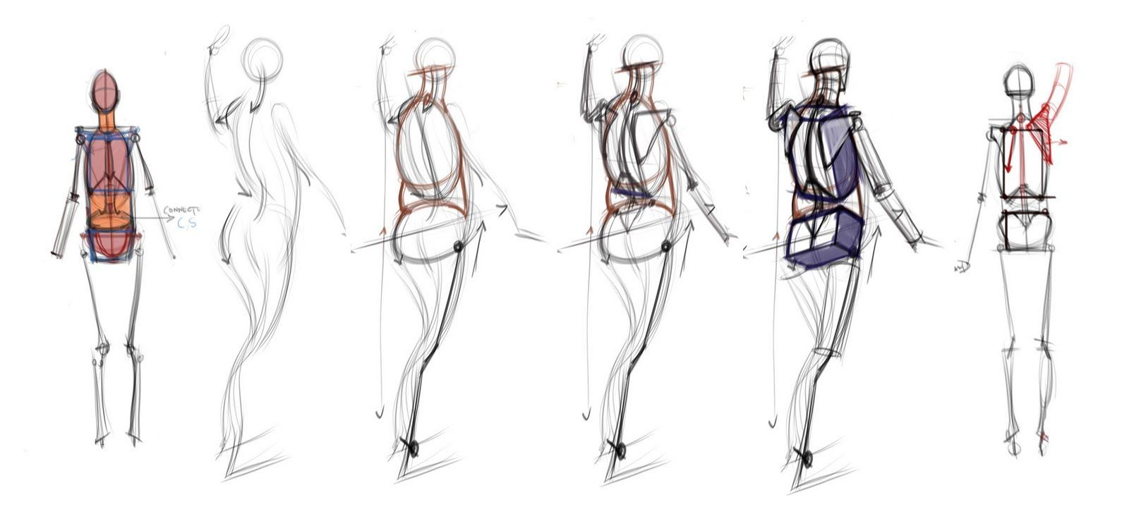 figuredrawing.info_news: Extras | reference | Pinterest | Anatomy ...