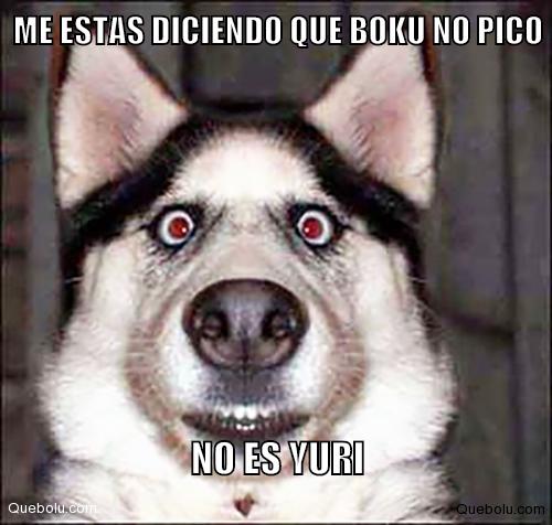 #Memes Creados por los usuarios  #quebolu #queboluFan www.quebolu.com