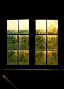 How To Remove Black Mold From My Wood Window Trim