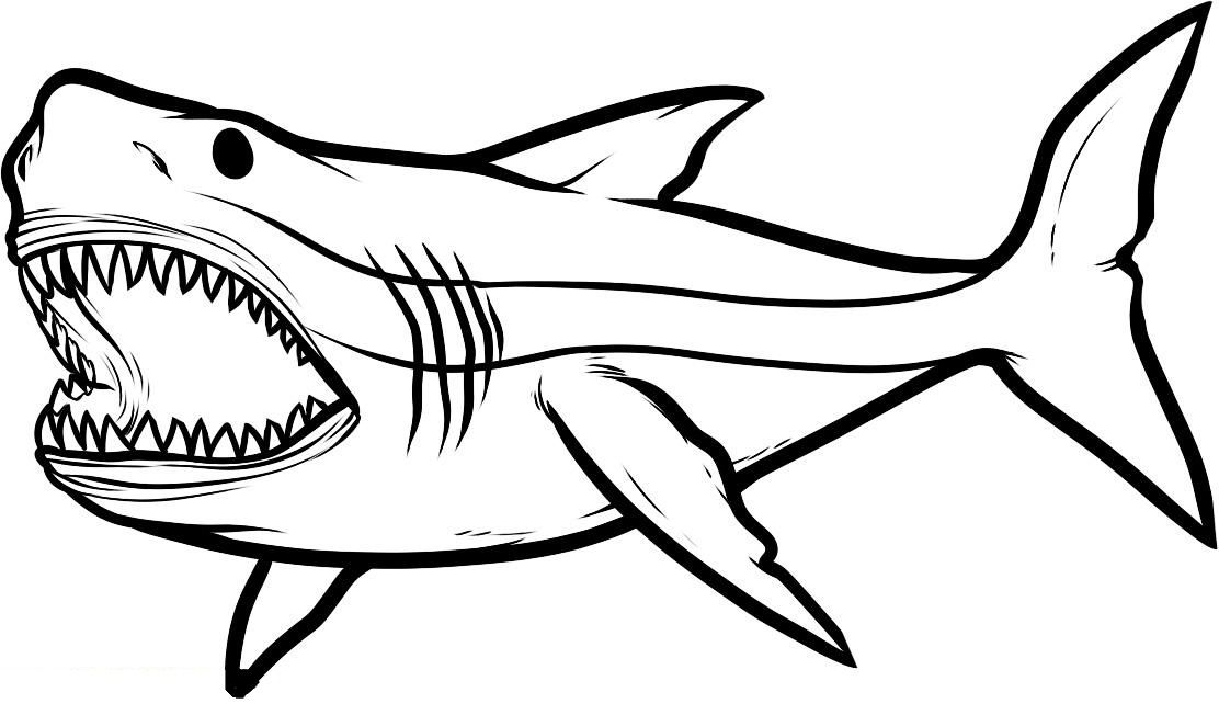 Scary Shark Coloring Pages Xxl Designs Trend