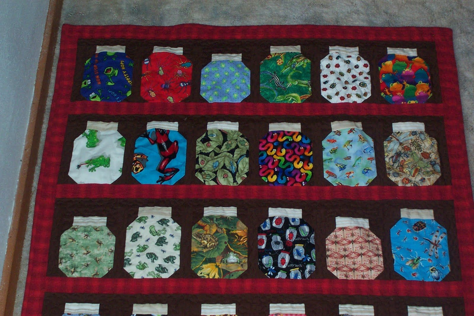 Bug Jar Quilt I Made For Grandson Xander I Spy Quilt Quilting Projects Wall Quilts