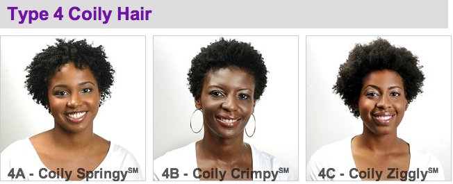 Type 4 Hair Chart With Pics Hair Type Chart Natural Hair Styles