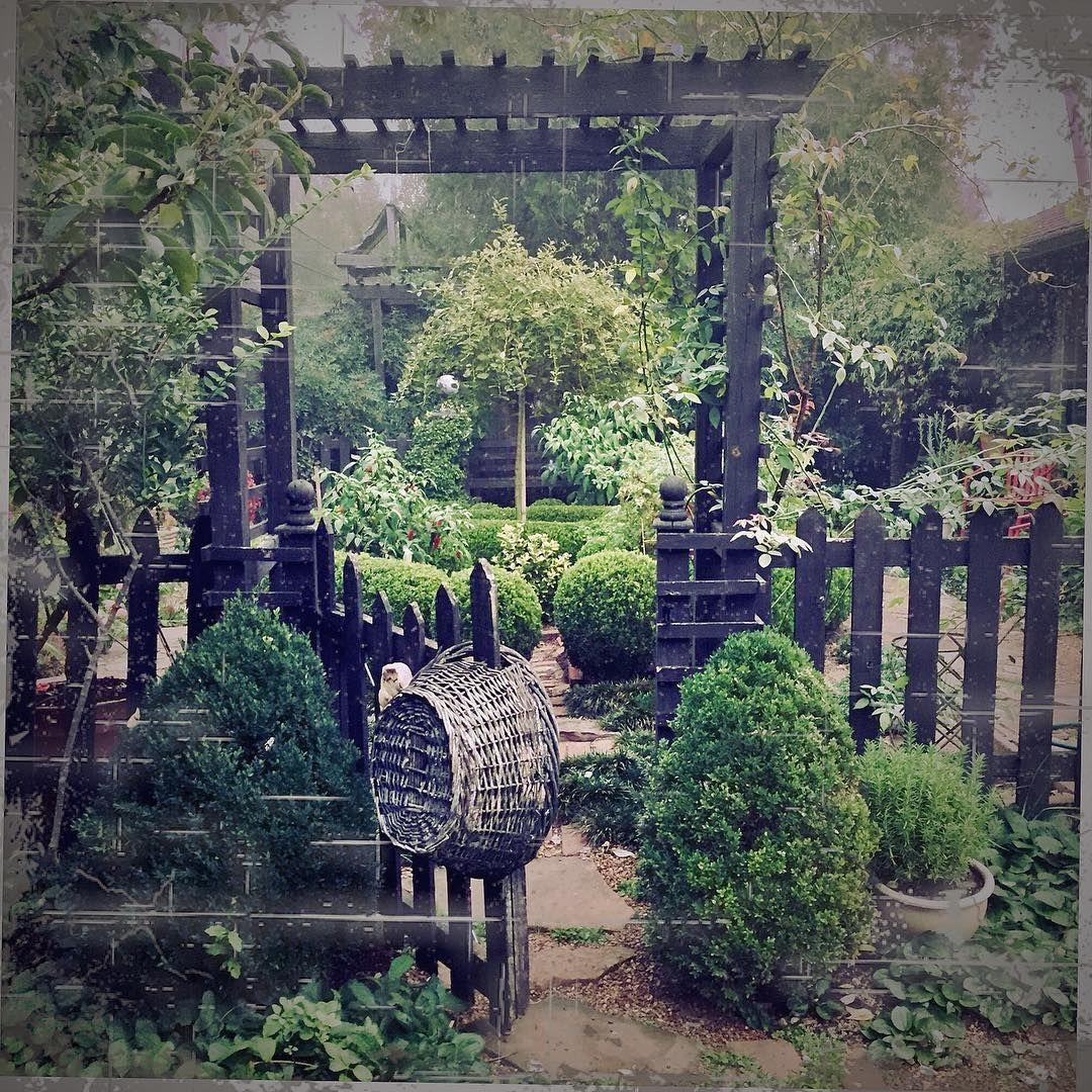 "Linda Vater on Instagram: ""This moody #garden image ..."