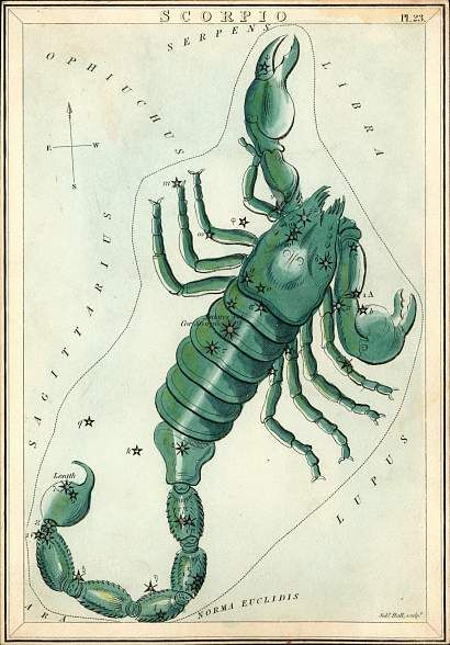 AstroSpirit / Scorpio / Water / The Scorpion / El Alacran  / Constellation