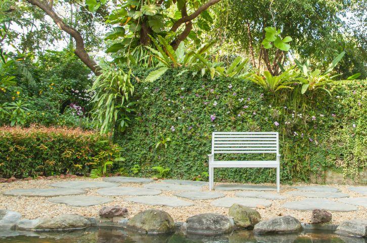 Sichtschutz im Garten - das ist erlaubt