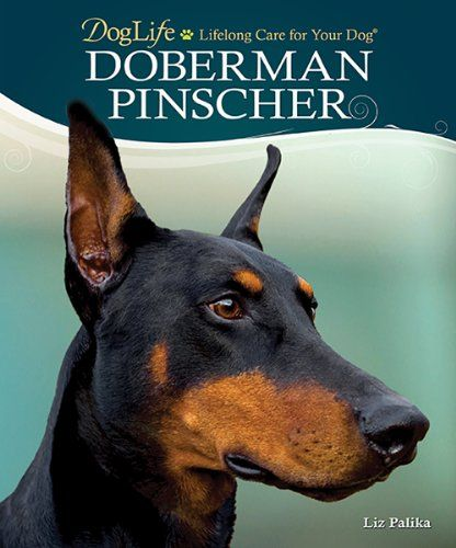 Doberman Pinscher (DogLife: Lifelong Care for Your Dog(TM)) by Liz Palika http://www.amazon.com/dp/079383614X/ref=cm_sw_r_pi_dp_nGBFvb1DT9FHK