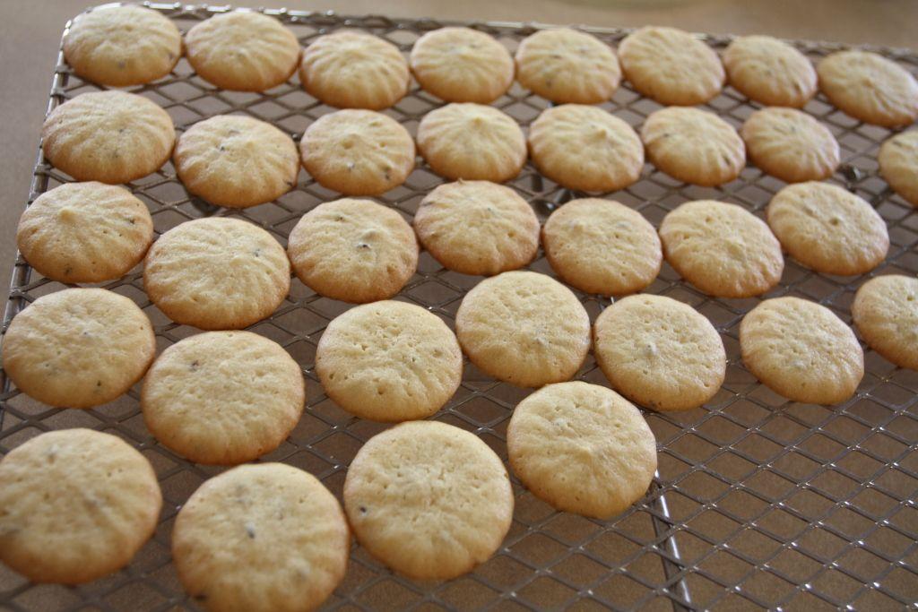 Caraway Seed Cookies Recipe Seed cookies, Caraway