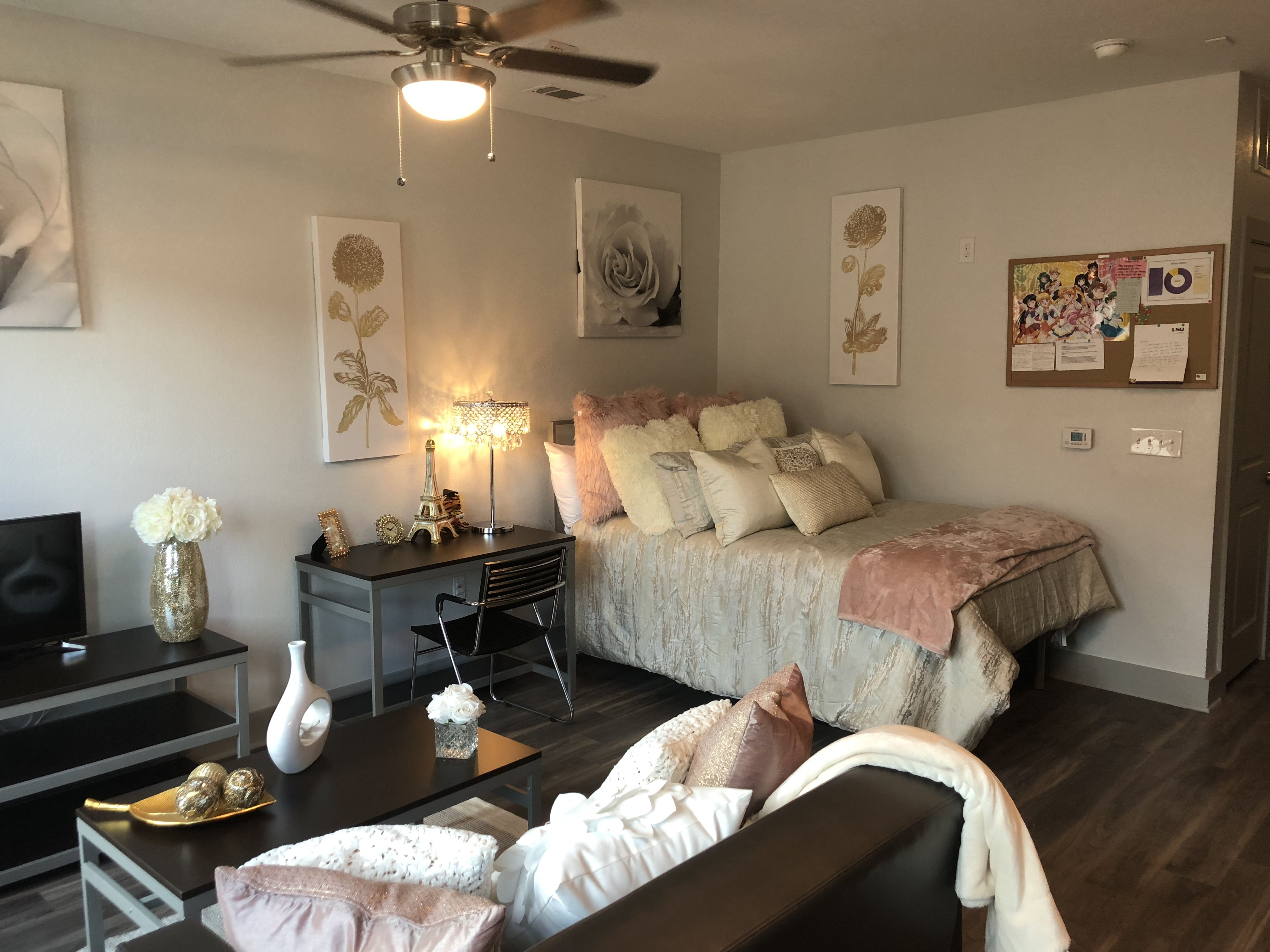 Our Nicholson Gateway Apartments Offer One Bedroom And Studio Apartments Where Students Can En Student Apartment Decor Studio Apartment Living Apartment Decor