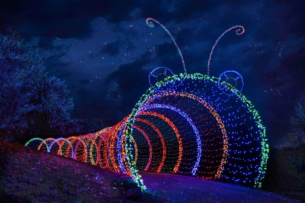Garden Of Lights Green Bay Wi Extraordinary Latest Posts Under Garden Of Lights  Ideas  Pinterest  Lights Decorating Inspiration