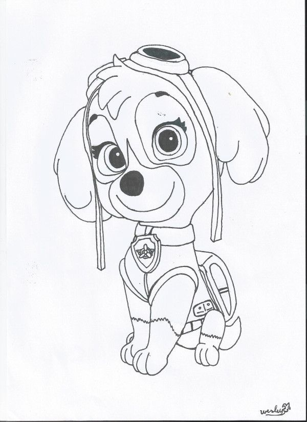 Coloring pages paw patrol paw patrol sky coloring page paw patrol skye by