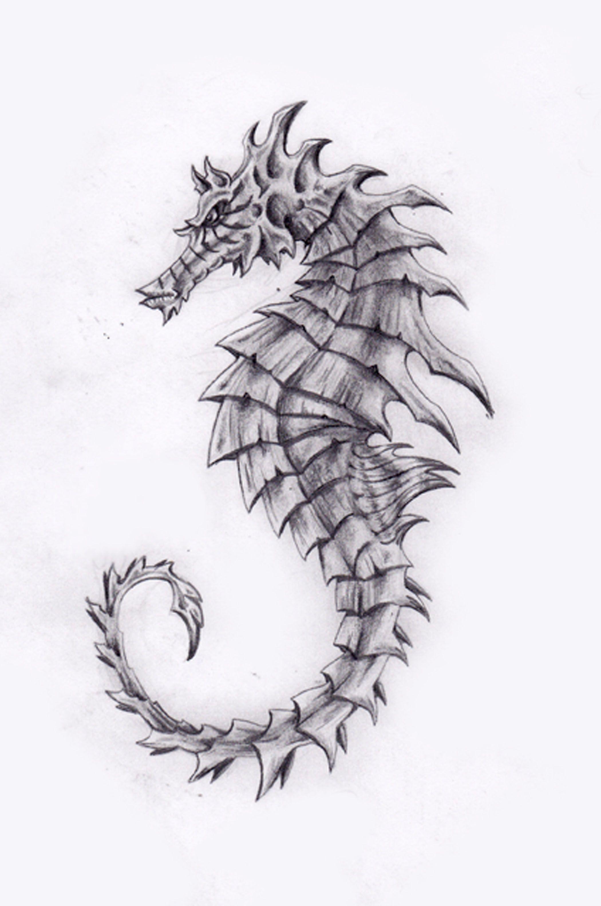 Seahorse Art - Bing Im...