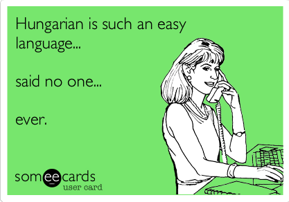 Pin By Winning Woman On Hungarian Hungarian Embroidery Hungarian Quotes Hungarian