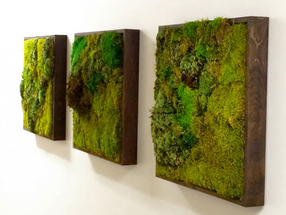 Scandia Moss Wall Art For Diy Preserved Panels Living Interior Design Walls The Newest Trend In Biophilic Interio Moss Wall Moss Wall Art Green Interior Design