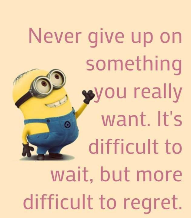 Never Give Up On Something You Really Want Funny Minion Quotes Minions Funny Funny Minion Pictures