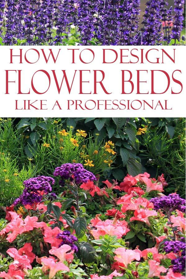 Professionally Design a Flower Bed #flowerbeds