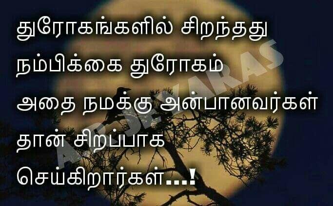 Exactly Tamil Quotes True Quotes Quotes True Words