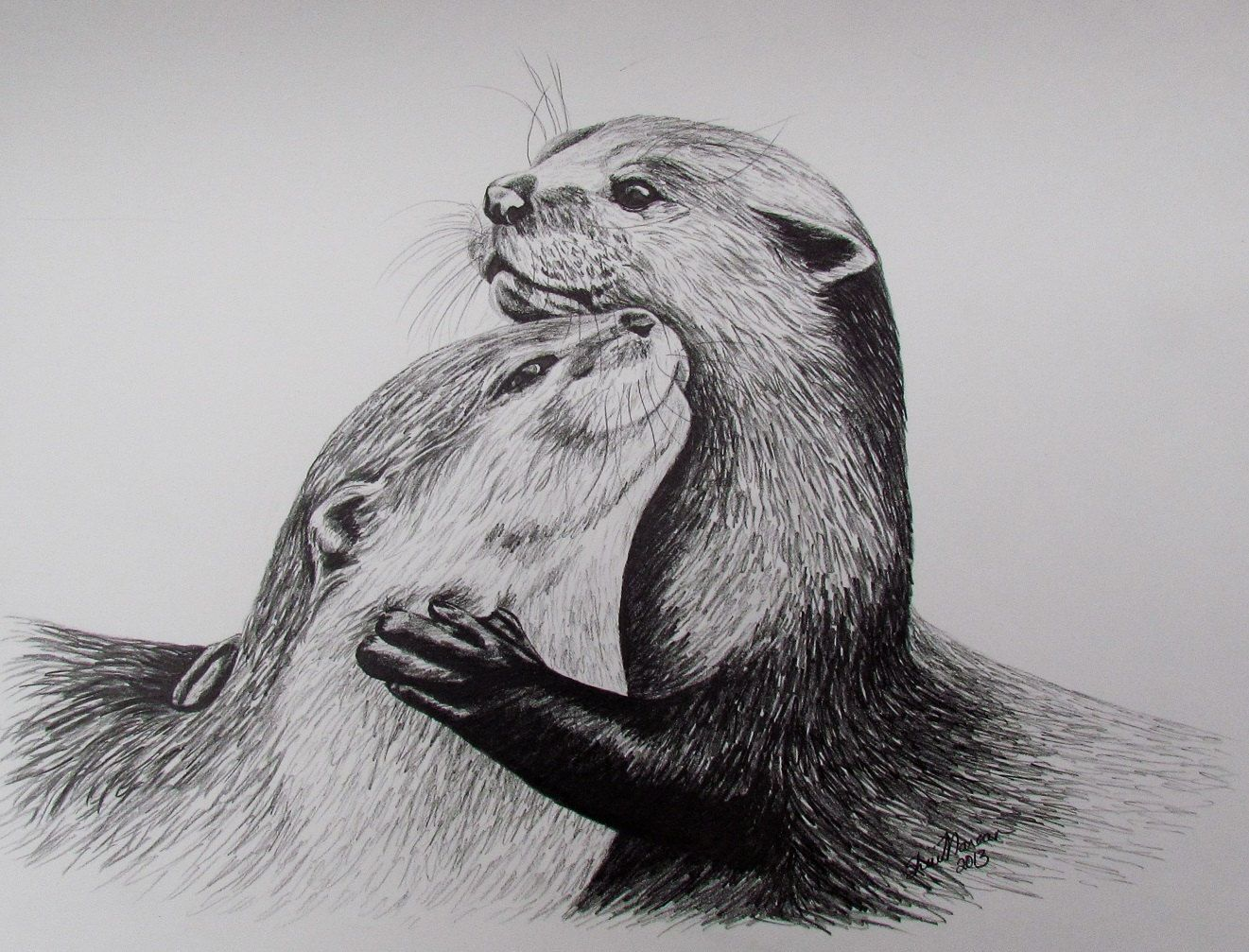 2 Otters Limited Edition Print, Black & White Drawing