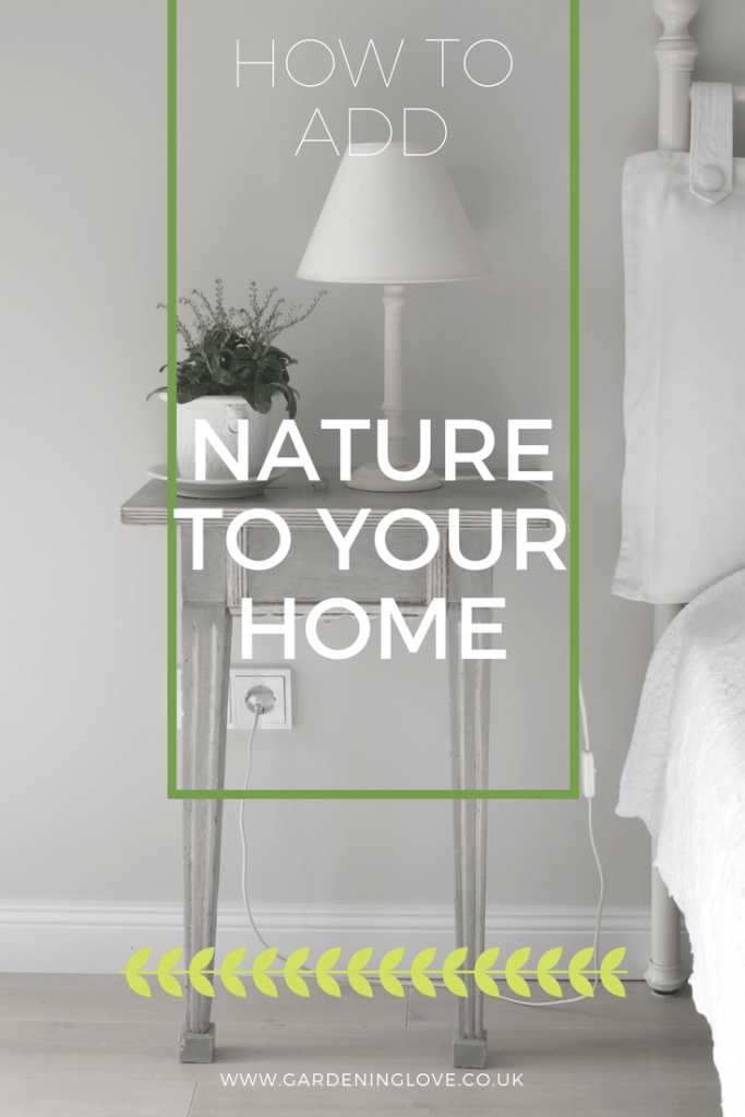 Ways To Bring Nature Into Your Home