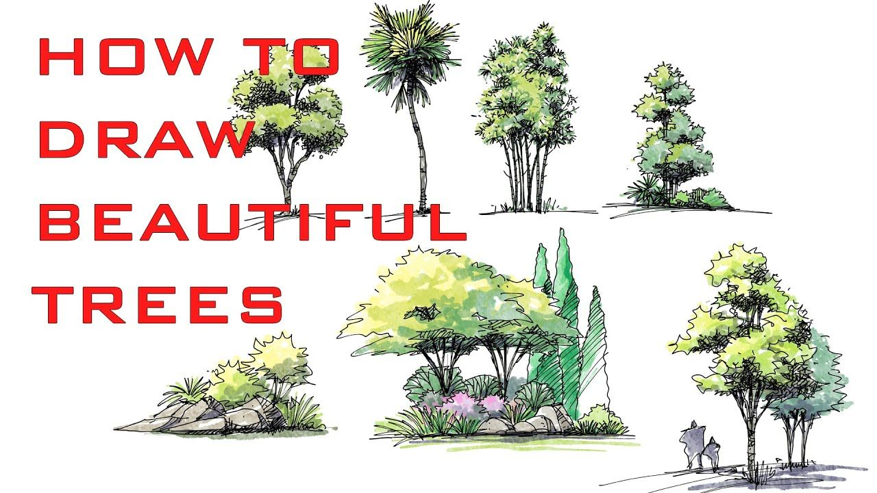 CONCEPTS APP TIPS - HOW TO MAKE BEAUTIFUL TREE SKETCHES ...