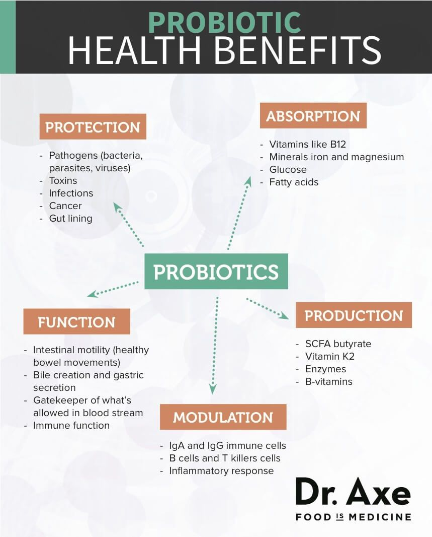 What Are Probiotics A Beginner S Guide Library What