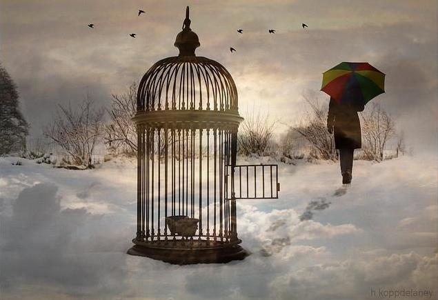 """""""La liberación afectiva es la posibilidad de establecer un vínculo de amor saludable y sin ataduras a través del cual cada quien pueda darle impulso al desarrollo de su libre personalidad, a pesar y por encima del amor. """"Liberación afectiva"""" significa tomar las riendas de la propia vida emocional, aún estando en pareja, sin agobios y sin sufrimientos inútiles que nos impidan ser como realmente somos o como se nos antoja ser"""". Walter Riso. http://phronesisvirtual.com"""